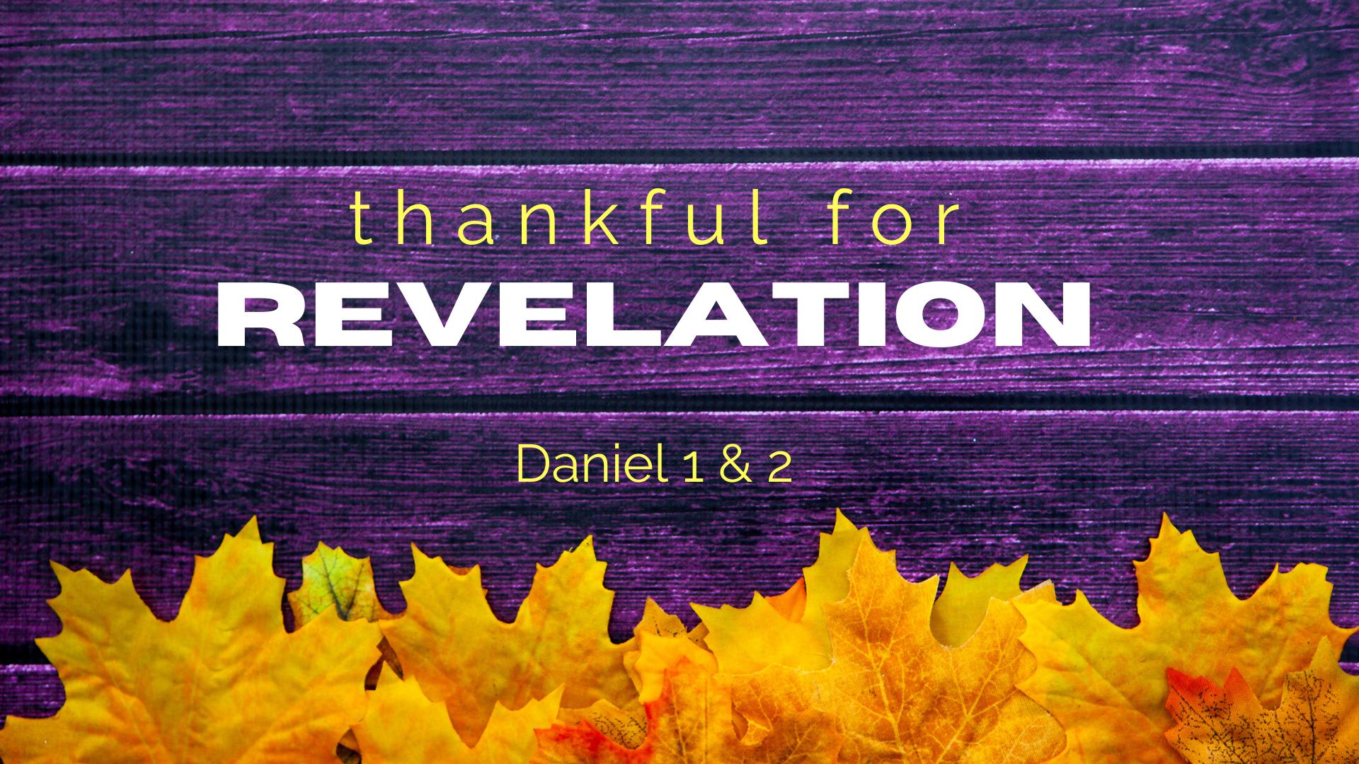 Thankful for Revelation